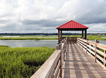 Waterfront Properties in the Lowcountry