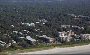 forest-beach-real-estate